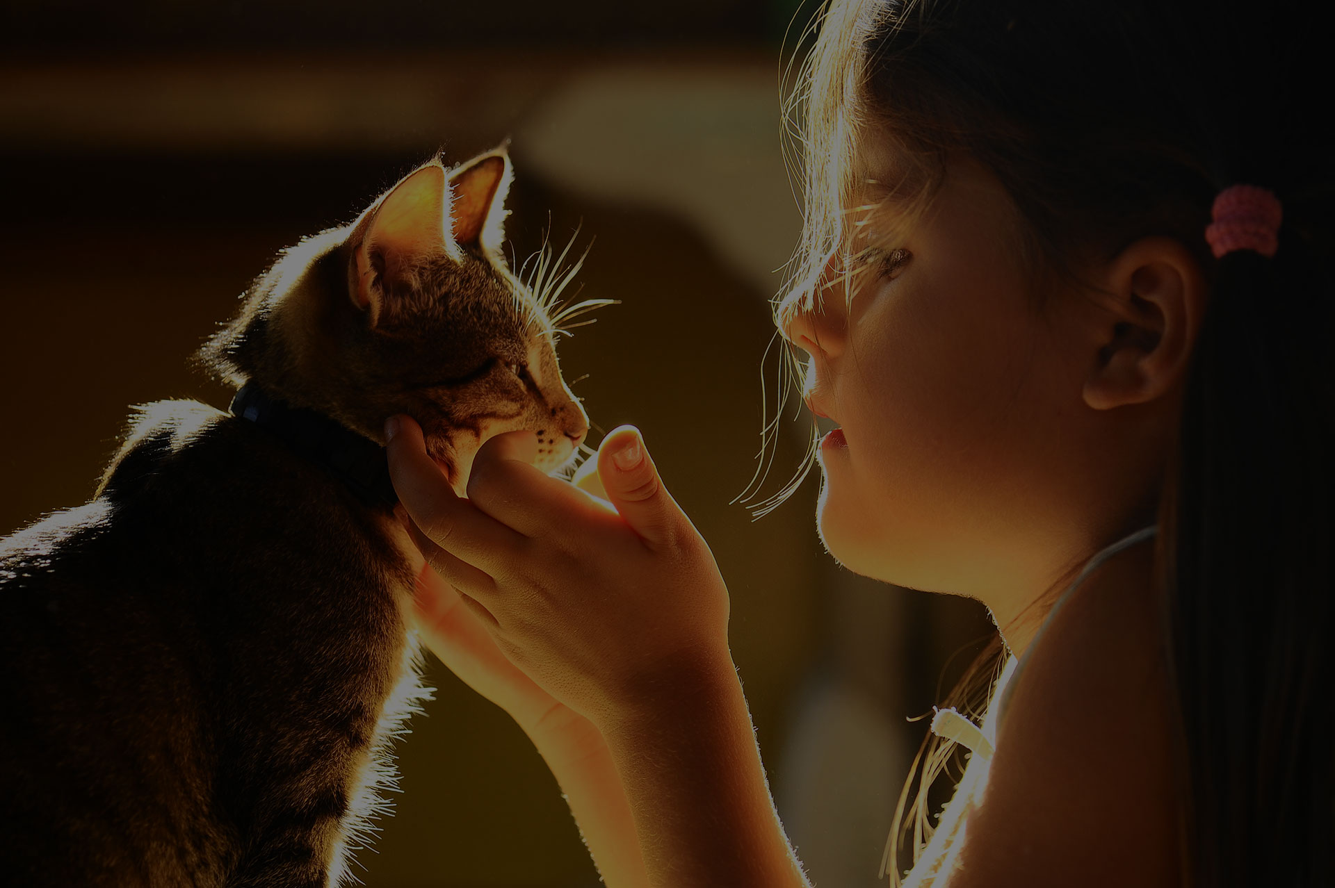 Image of girl and a cat sharing a moment.